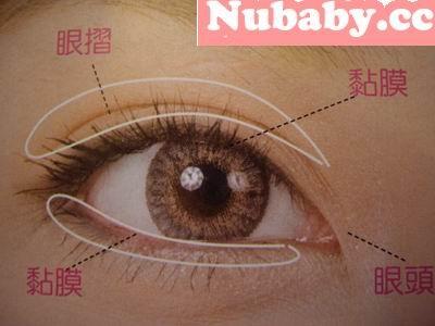 彩妝教學-認識眼部彩妝的名詞