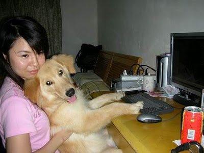 店狗身世 店狗Yuka五歲生日快樂