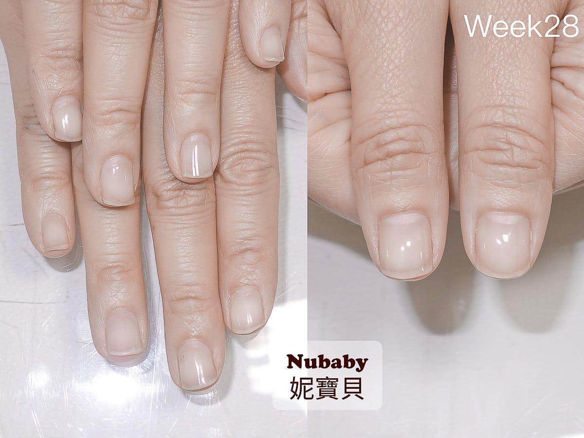 矯正甲型-咬指甲 指緣乾的扇形指甲矯正