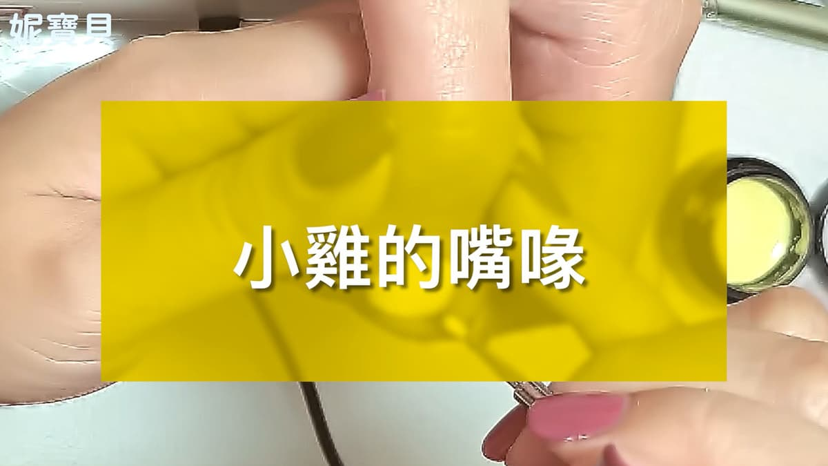 手繪小雞 凝膠指甲彩繪 藝術指甲設計